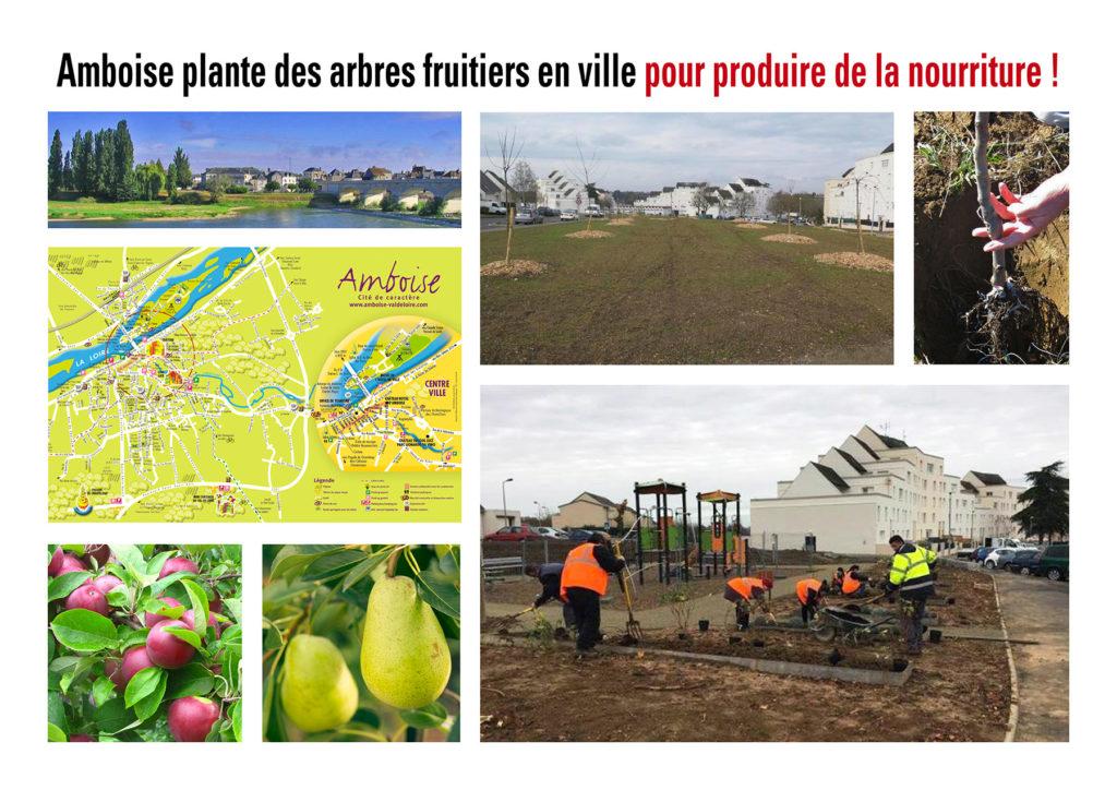 """Dans un quartier urbain d'Indre-et-Loire : """"Exit, les vieux immeubles vive les arbres fruitiers !"""""""