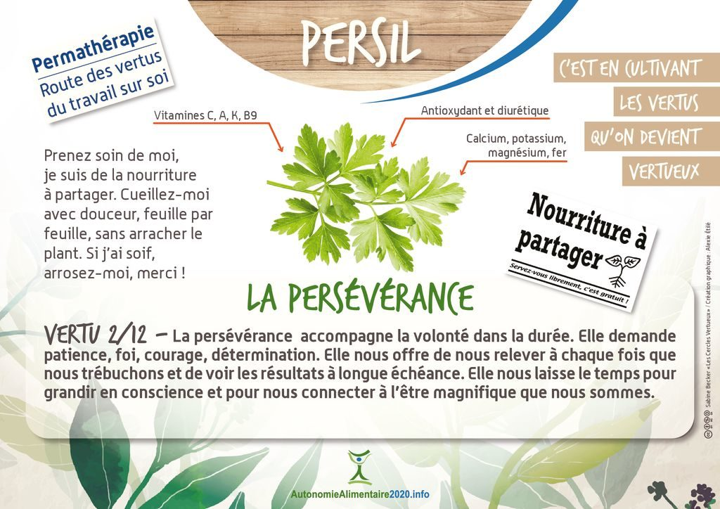 thumbnail of FicheVertu2-persil