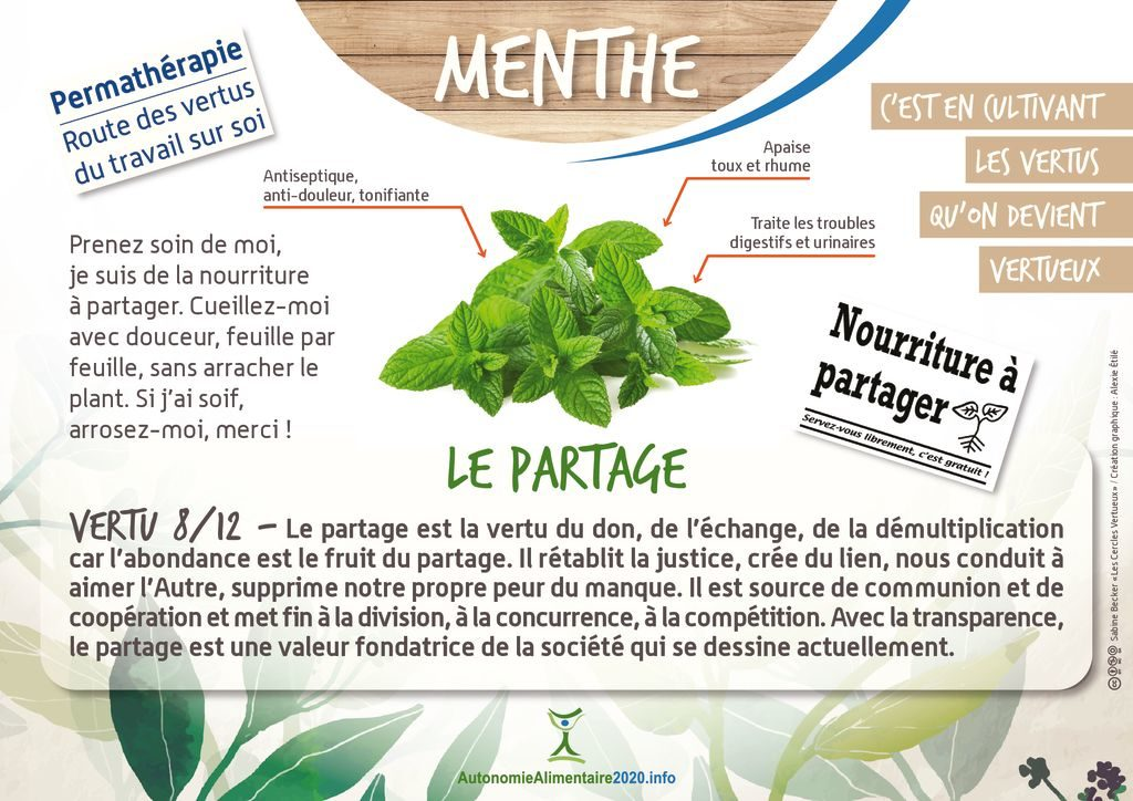 thumbnail of FicheVertu8-menthe