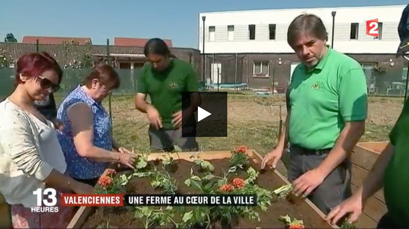 À Valenciennes, une ferme urbaine crée de l'emploi dans un quartier défavorisé