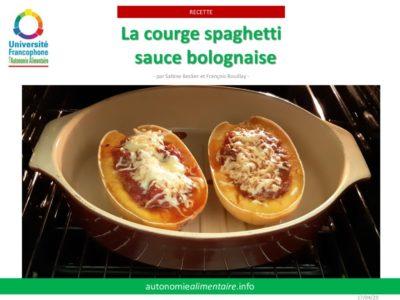 thumbnail of 13 – courge spaghetti à la Bolognaise